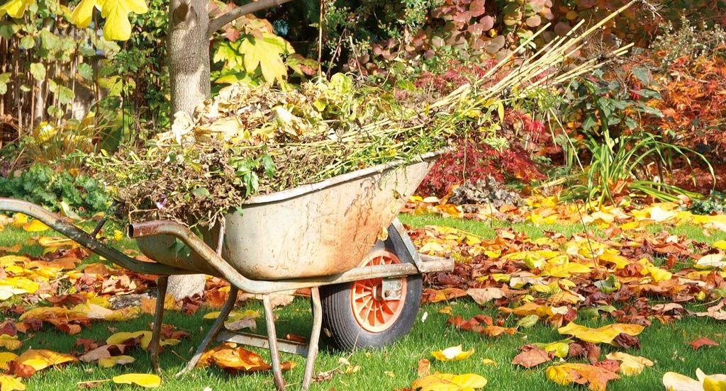 L'automne, saison morte pour le jardin ?