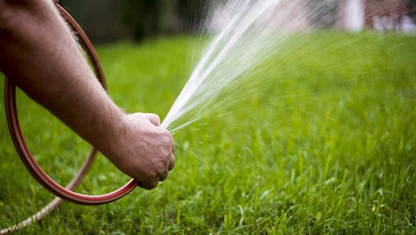 La meilleure façon d'arroser votre pelouse