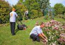 Pourquoi faire appel à un jardinier-paysagiste?