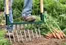 La grelinette, outil indispensable en permaculture